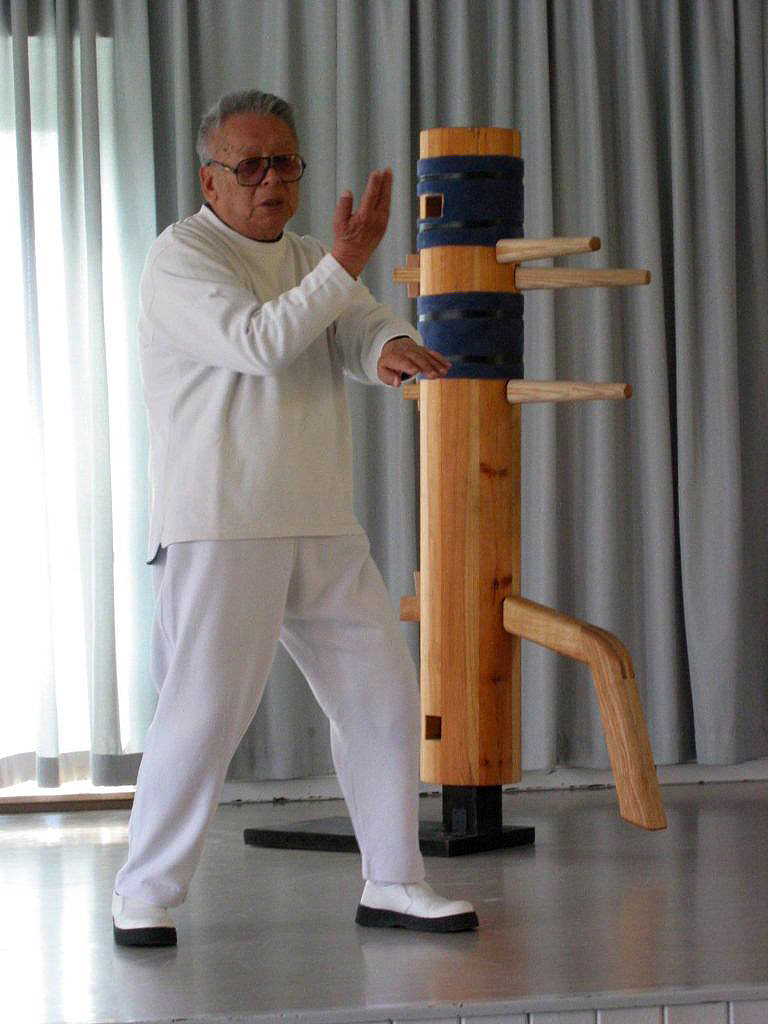 Wang Kius seminar for the German Lo Man Kam Association
